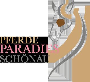Pferdeparadies Schönau I Reitpädagogik im Lechtal - Tirol